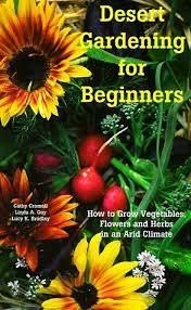 Desert Gardening For Beginners - Desert Gardening 101