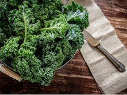 Different Uses For Kale - How To Use Kale Plants Post Harvest