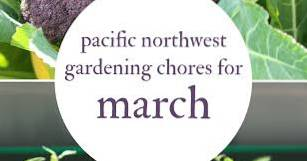 Pacific Northwest Gardens - What To Plant In March