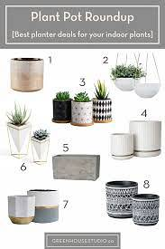 Výběr nejlepších rostlin pro vaše vnitřní kontejnery